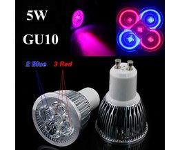 GU10 50W LED Lamp