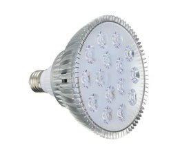 Kweek LED Lamp Geeft Paars Licht