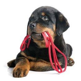 Hondenriemen & Hondenbanden