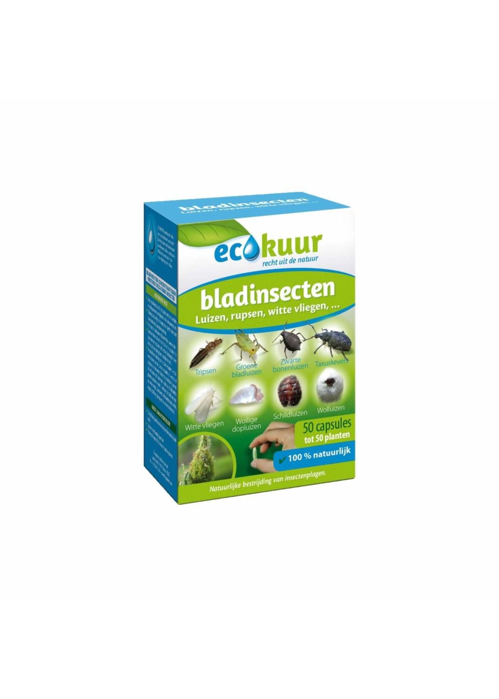 BSi Bladinsecten 50 capsules (gelcapsules)