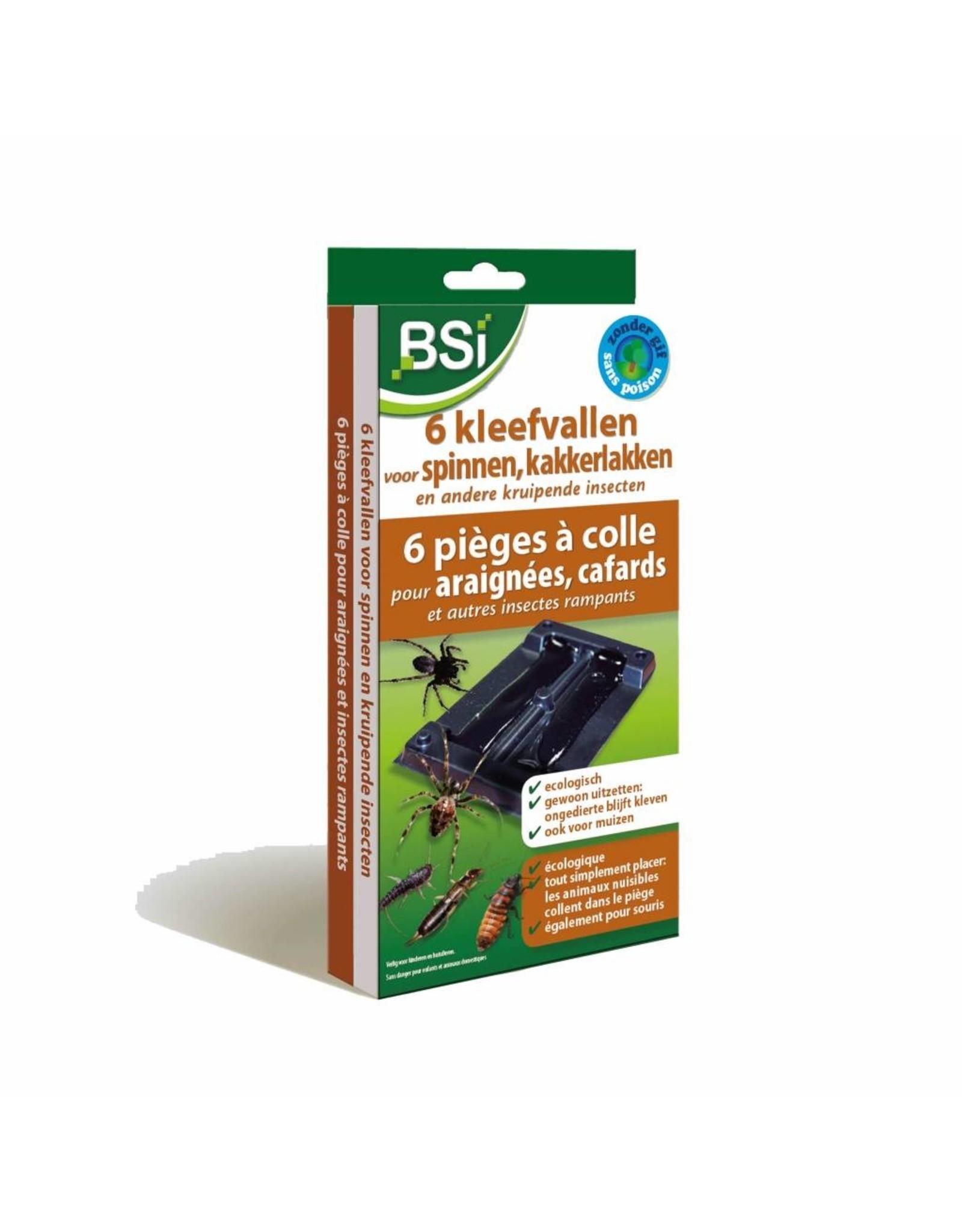 BSi 6 Kleefvallen voor spinnen en kruipende insecten