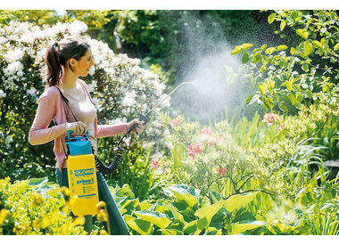 Tuin & border verzorgen
