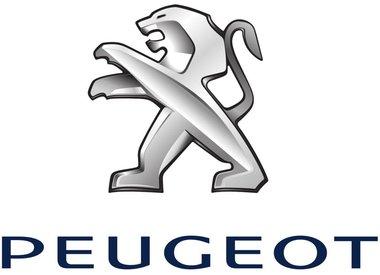Uitlaatset Peugeot