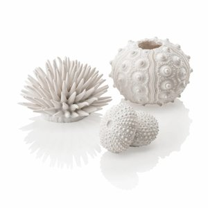 biOrb Zee-egel decoratieset urchin wit