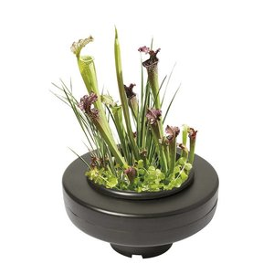 AquastoreXL Floating Plant Basket - 30cm rond