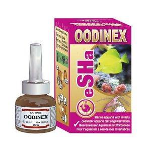 Esha Oodinex