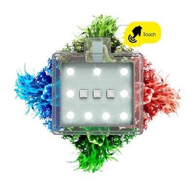 Ciano Nexus Pure Betta Life 5C - Bundel
