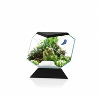 Ciano Nexus Pure Betta Life 5C - Bundel