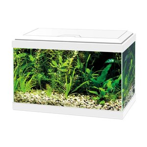 Ciano Aqua 20 LED 17L Wit