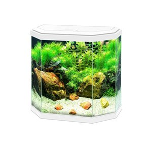 Ciano Aqua 30 LED 25L Wit
