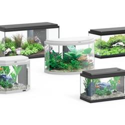 Aquatlantis aquaria