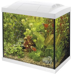 Superfish Start 50 Tropical Kit Wit