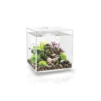 biOrb Cube 60 LED Wit