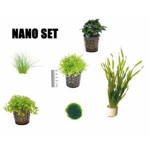 Plantenpakket Nano
