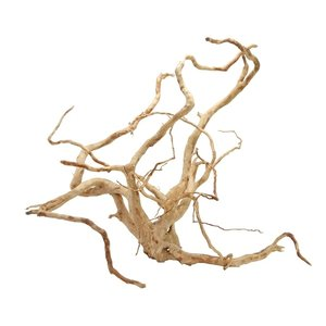 HS Aqua Spider Wood M