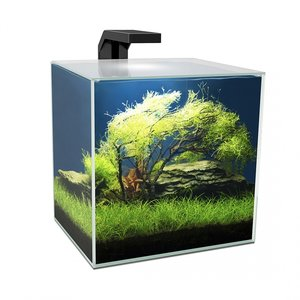 Ciano Aquarium cube 15 LED CF40
