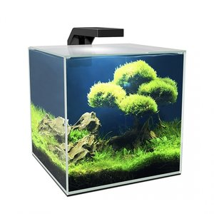 Ciano Aquarium cube 10 LED CF20