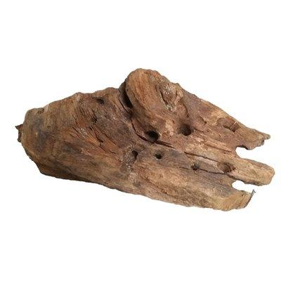 Driftwood L 30-40cm