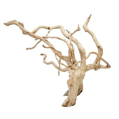 HS Aqua Spider Wood L