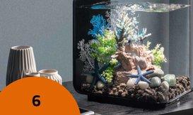 6 Redenen om een biOrb aquarium aan te schaffen