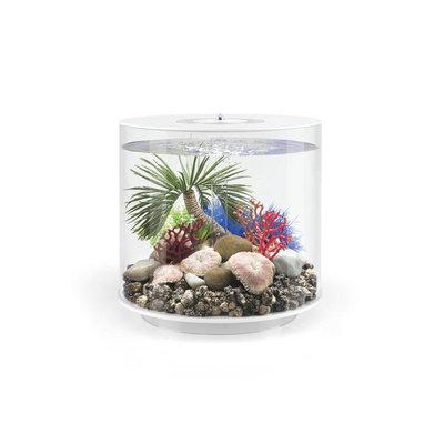 biOrb Plaat koraal set - 3 stuks