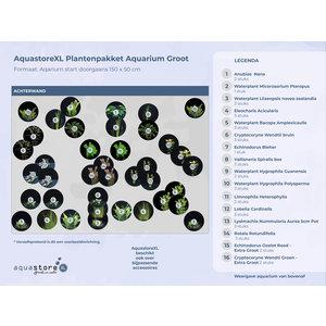 AquastoreXL Plantenpakket Aquarium Groot
