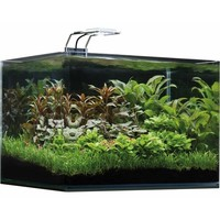 Dennerle Nano Scapers Tank Basic 35L - Led 5.0