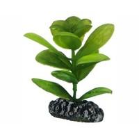 Hobby Plant Saururus 7cm
