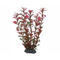 Hobby Plant Ludwigia 25cm