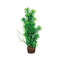 Hobby Plant Flora Stone 5
