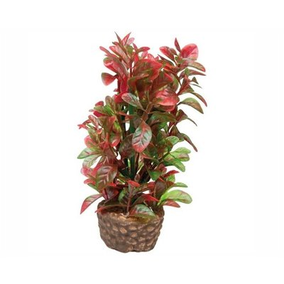 Hobby Plant Flora Stone 4