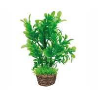Hobby Plant Flora Stone 3