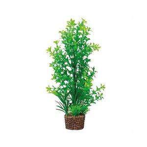 Hobby Plant Flora Stone 6
