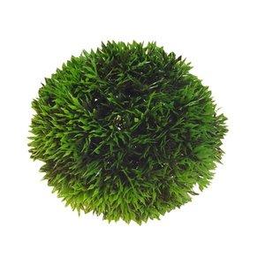 Hobby Aqua Plant Bal 9cm
