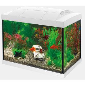 Superfish Start 20 Goldfish Kit Wit