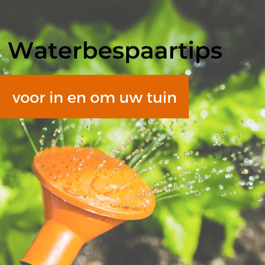 Waterbespaartips voor de tuin