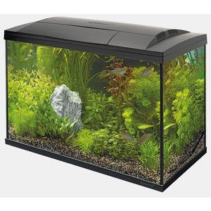 Superfish Start 100 Tropical Kit Zwart