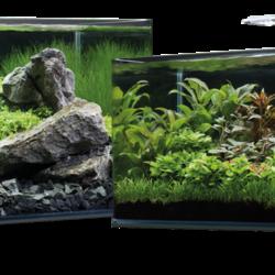 Dennerle aquaria