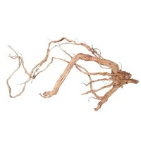 HS Aqua Azalea Root M 50-80cm