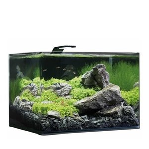 Dennerle Nano Scapers Tank Basic 55L - Style Led