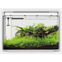 Superfish Home 65 Aquarium Wit