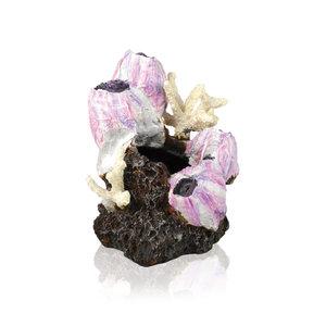 biOrb Eendenmossel Roze S ornament