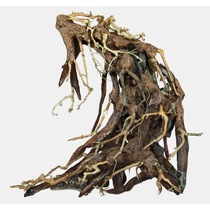 Superfish Bonsai Root Large