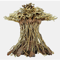 Superfish Bonsai Mushroom Medium
