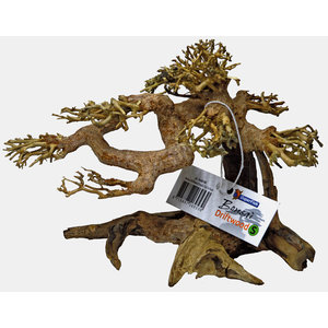 Superfish Bonsai Driftwood S