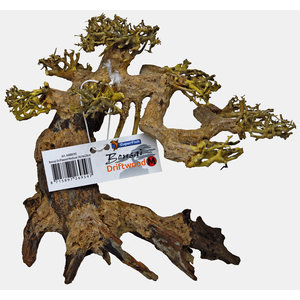 Superfish Bonsai Driftwood M