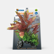 Superfish Deco Plant L Henkelianus