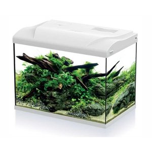 HS Aqua Aquarium Platy 50 LED Wit