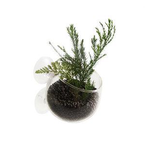 Aqua D'ella Glazen plantenpotje