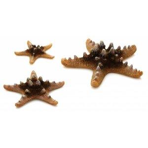 biOrb Sea stars 3x natural